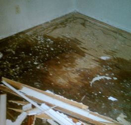 We Take Care Of All Water Damage